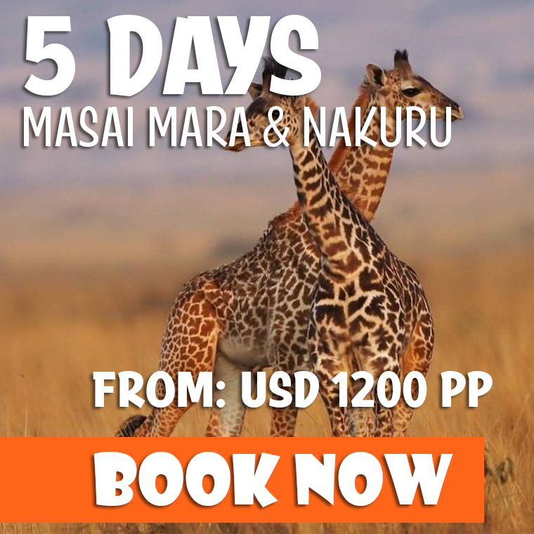 5 Days Kenya Safari Offer
