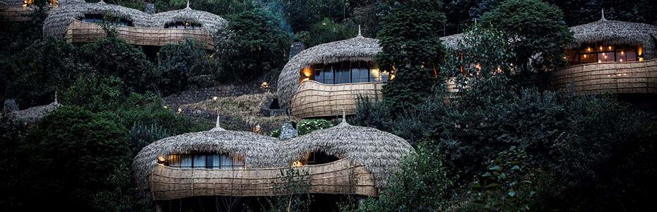 Bisate Gorilla Lodge