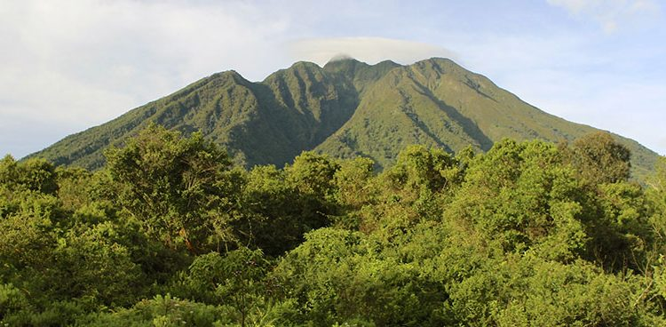 Virunga Conservation Area