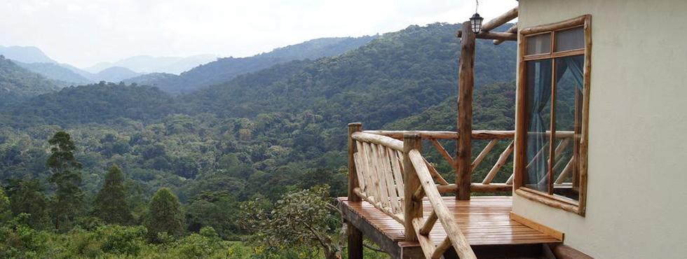 Buhoma Gorilla Trekking
