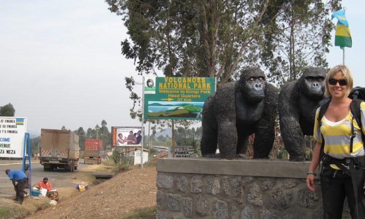 Cyanika Border