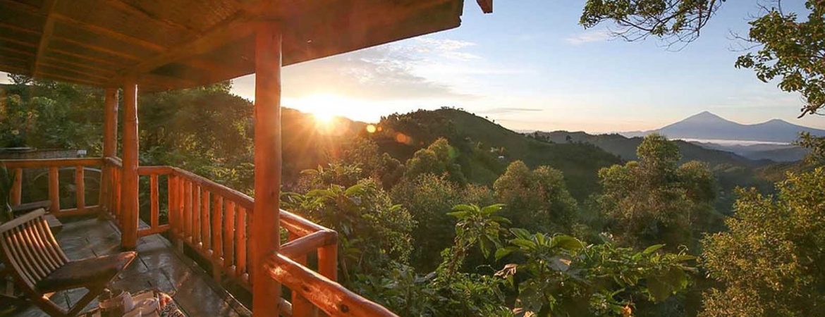 Best Luxury Lodges in Bwindi