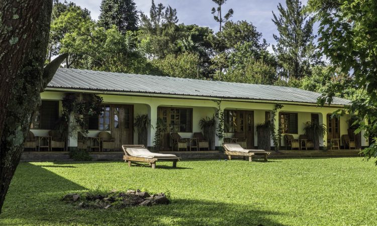 Budget Lodges in Kibale National Park