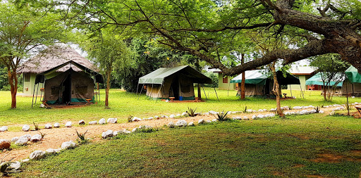 Budget Lodges in Murchison Falls