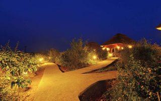 Mid-Range Lodges in Queen Elizabeth National Park